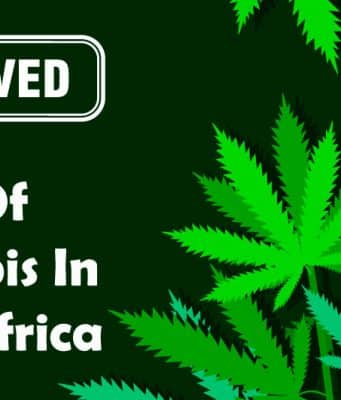 Private Use of Cannabis Gets Cabinet Approval in South Africa